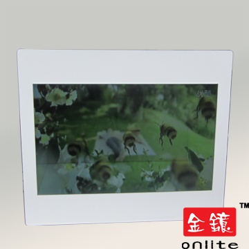 "19"" Transparent LCD Advertising Player"